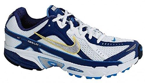 Nike Air Cesium 2 / 317031-102