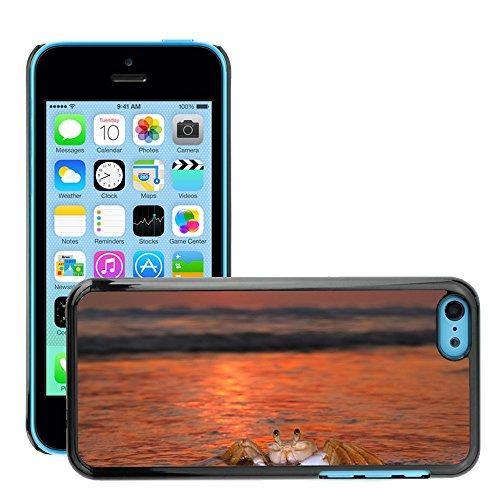 Stampato Modelli Hard plastica Custodie indietro Case Cover pelle protettiva Per // M00421726 Siri Sol plage de Mar // Apple iPhone 5C