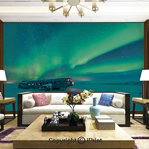 Mural Wall Art Photo Decor Wall Mural for Living Room or Bedroom,Old Plane Wreck Under Aurora Borealis Misty Winter Day View,Home Decor - 100x144 inches ()