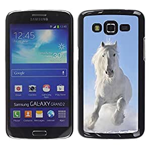 Be Good Phone Accessory // Dura Cáscara cubierta Protectora Caso Carcasa Funda de Protección para Samsung Galaxy Grand 2 SM-G7102 SM-G7105 // Majestic White Winter Horse