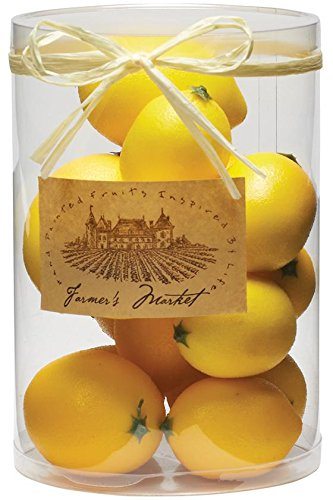 Boxed Fruit Set, 10.5''Hx6''D, LEMONS by Home Decorators Collection