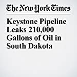 Keystone Pipeline Leaks 210,000 Gallons of Oil in South Dakota   Mitch Smith,Julie Bosman