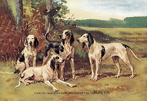Buyenlarge 0-587-04742-9-P1827 Gascon-Saintongeois Hounds of the Virelade Type Paper Poster, 18
