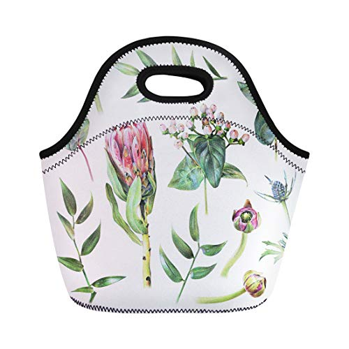 Semtomn Lunch Bags Protea Feverweed Hypericum Buttercup Buds Eucalyptus and Green Leaves Neoprene Lunch Bag Lunchbox Tote Bag Portable Picnic Bag Cooler Bag