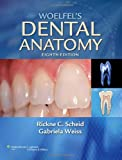 Woelfel's Dental Anatomy 8th Edition