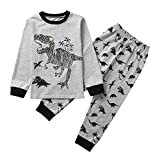 Oldeagle Baby Boys Girls Long Sleeve Cartoon Dinosaur Print Tops+Pants 2PCs Pajamas Clothing Set (24M, Gray B)