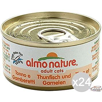 Juego 24 Almo Nature gato 5023 lata 70 Tonno y gambere comida para gatos: Amazon.es: Hogar
