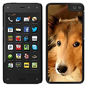 // PHONE CASE GIFT // Duro Estuche protector PC Cáscara Plástico Carcasa Funda Hard Protective Case for Amazon Fire Phone / Collie Shetland Sheepdog Canaan Dog /