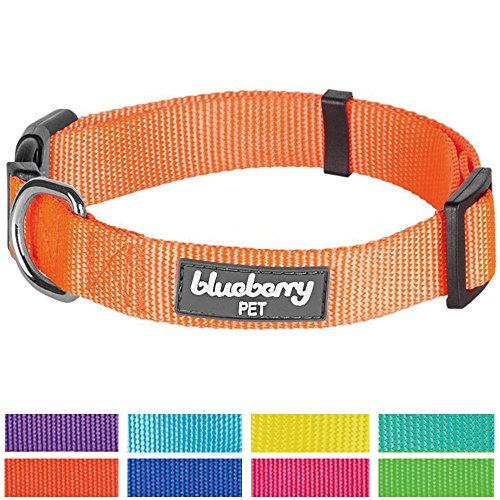Blueberry-Pet-Classic-Solid-Color-Nylon-Dog-Collar-Matching-Leash-Harness-Available-Separately