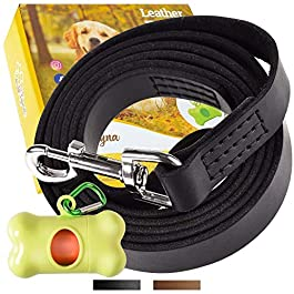 ADITYNA Leather Dog Leash 6 Foot – Leather Leash for Training and Walking Small, Medium or Large Dogs