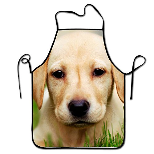 Liubajsdj-Waist Adjustable Professional Apron Kitchen Cute Golden Retriever Puppy Woman Aprons Comfortable Perfect For Cooking Guide