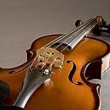 Fishman V-300 Concert Series Violin Pickup