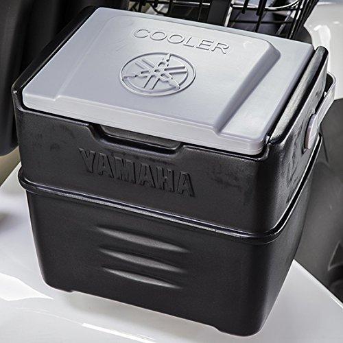 The DRIVE Cooler For Yamaha Golf Cars PTV (Yamaha Drive)