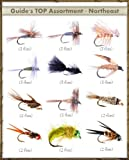 FlyDeal Fishing Flies Top Selling Flies - Guide's TOP Assortment - NORTHEAST (31 flies)