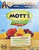 Mott's Medleys Assorted Fruit Snack Pouches - 64 Count