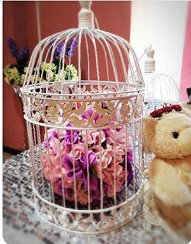 PET SHOW Round Birdcages Metal Wall Hanging Bird Cage for Small Birds Wedding Party Indoor Ourdoor Decoration 13.8INCH White Pack of 1