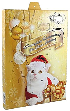 Perfecto Cat Calendrier De L Avent Pour Chat Amazon Fr