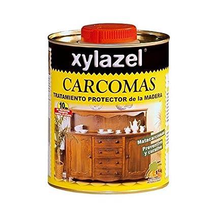 nuestra recomendación sobre productos anti carcoma