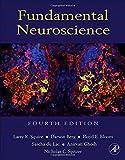 img - for Fundamental Neuroscience, Fourth Edition (Squire,Fundamental Neuroscience) book / textbook / text book