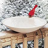 API 600 20-Inch Diameter Heated Bird Bath Bowl (no stand)