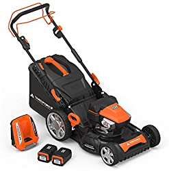 Best Self Propelled Lawn Mower For Hills 2 Best Self Propelled Lawn Mower For Hills