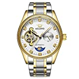 AILANG Mens Crystals Mechanical Tourbillon Moon Phase stainless steel Dress Watch AL-8503G