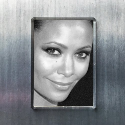 newton fridge magnet - 9
