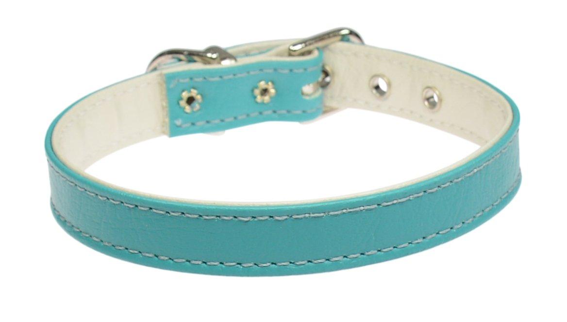 Evans Collars 1 2  Collar, Size 10, Vinyl, Turquoise