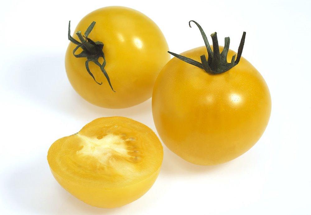 Mayan Seeds LLC Vegetable Seeds Quality and High Yield 50 Yellow Pearl Tomato Bao Jian tomato garden planting by Mayan Seeds LLC