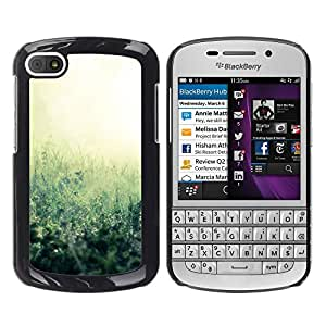 Paccase / SLIM PC / Aliminium Casa Carcasa Funda Case Cover - Plant Nature Forrest Flower 38 - BlackBerry Q10