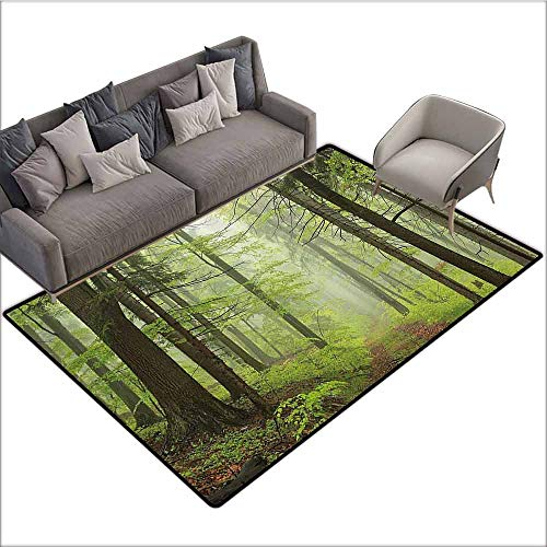 - Indoor Super Absorbs Doormat Outdoor,Trail Trough Foggy Alders Beeches Oaks Coniferous Grove Hiking Theme,Light Green Light Yellow 36