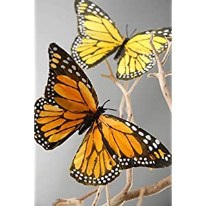 Decorative Monarch Butterflies   6 Pk 21