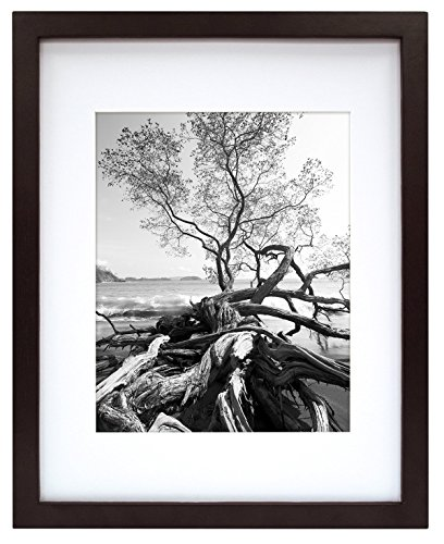 MCS 12x16 Inch Art Frame with 8x12 Inch Mat Opening, Walnut (65588)