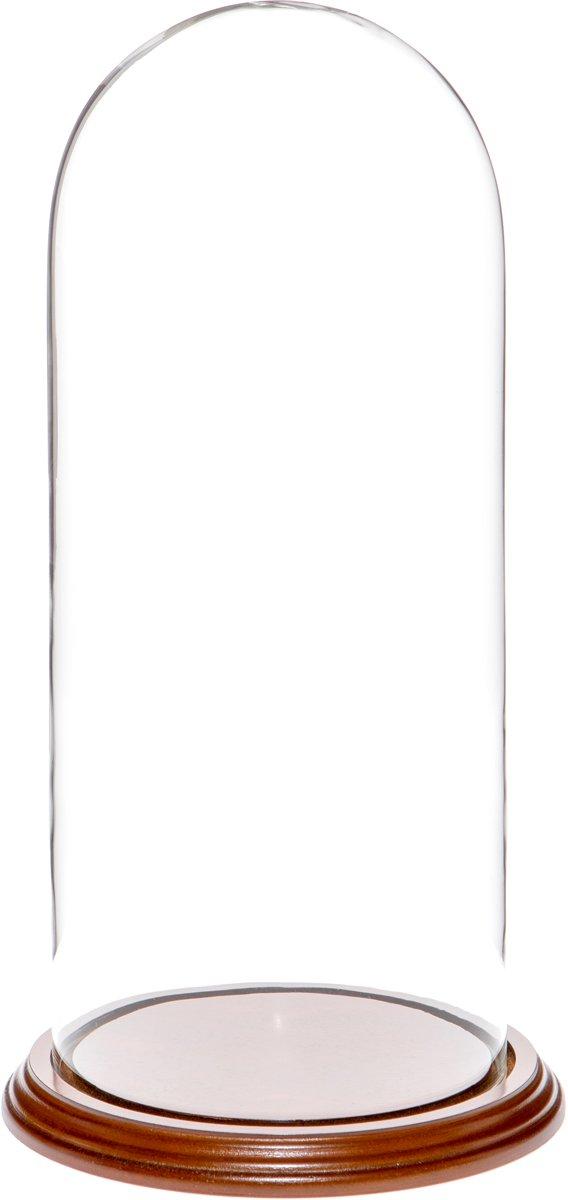 Plymor Brand 5.5'' x 13'' Glass Display Dome Cloche (Walnut Veneer Base)