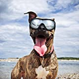 Dog Goggles - Dog Sunglasses Pet Sunglasses Medium to Large Dogs (Black)