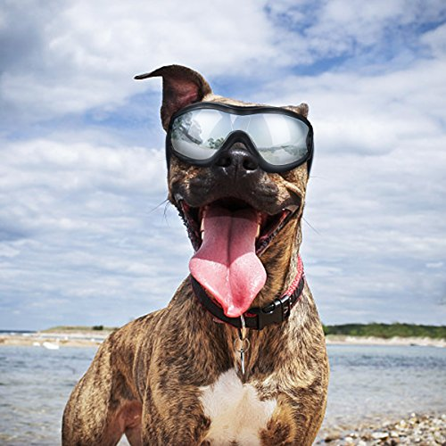 Dog Goggles - Dog Sunglasses Pet Sunglasses for Medium to Large Dogs (Black) by K&L Pet