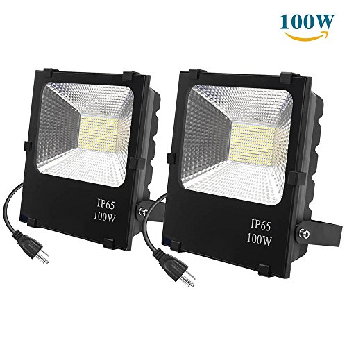 Richday New 2Pack 100W LED Flood Lights,8000Lm 240 Lamp Beads,Waterproof IP65,Daylight White 6500k 85V-265V,Outdoor Work Light for Garage,Garden,Lawn and Yard