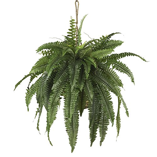 Nearly Natural 6774 Boston Fern Hanging Basket, Large, Green (Renewed)