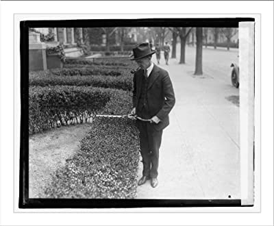 Historic Print (L): Hedge trimmer