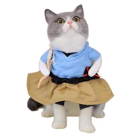CCYK Disfraces Divertidos del Gato del Perro Boxer, Doctor ...