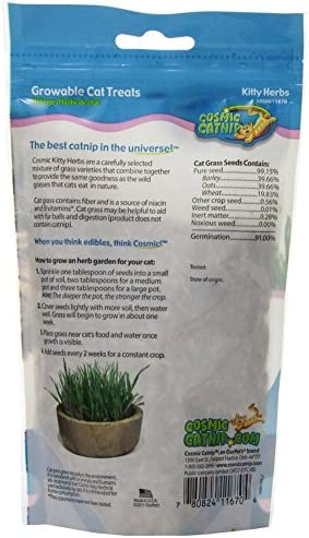 (2 Pack) Pet Zone OurPets Kitty Herbs, 5 Ounces each