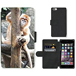 Super Stella Cell Phone Card Slot PU Leather Wallet Case // M00107280 Monkey Animal Zoo Wildlife Mammal // Apple iPhone 6 PLUS 5.5""