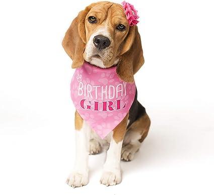 Medium or Large Small Birthday Girl PINK Dog Bandana