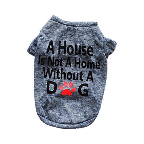 Pet Shirt Daoroka Small Large Dog Cat Costume Puppy Vest Summer Letter Sweatshirt Girl Boy Pet Clothes Fashion Apparel (S, Gray)]()