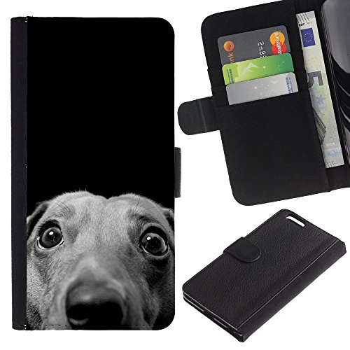 OMEGA Case / Apple Iphone 6 PLUS 5.5 / whippet Italian greyhound hound dog / Cuir PU Portefeuille Coverture Shell Armure Coque Coq Cas Etui Housse Case Cover Wallet Credit Card