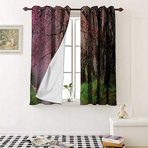 (Japanese Garden Blackout Draperies for Bedroom National Park in Chiang Mai Cherry Blossoms Spring Picture Curtains Kitchen Valance W72 x L63 Inch Fuchsia Brown Fern Green)