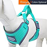 dog harness puppies - ThinkPet Reflective Breathable Soft Air Mesh Puppy Dog Vest Harness Neon Green Neck 14-17.5