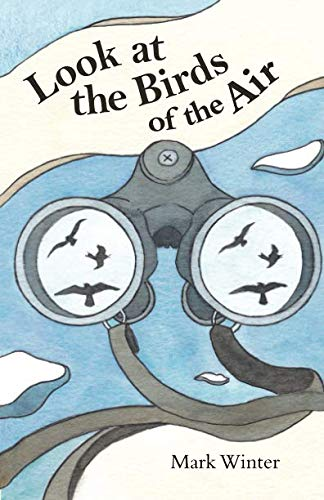 Look at the Birds of the Air: lessons from birds in the Bible