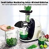 Slow Juicer,AMZCHEF Slow Masticating Juicer