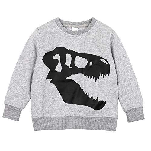 - CharmLeaks Boys Pullover Sweat Shirt Crew Neck Cotton t Shirt Dinosaur Skull Sweat Shirts Gray